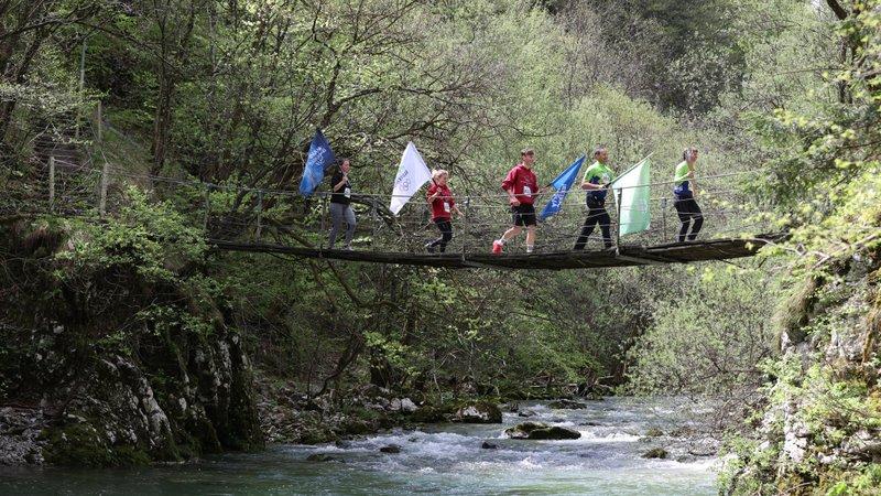 Plamenica na razgibanem potovanju po Sloveniji